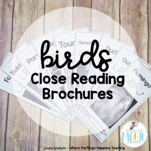 birds close reading